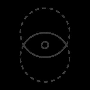 Icon: Elemente bilden Auge Dunkelgrau